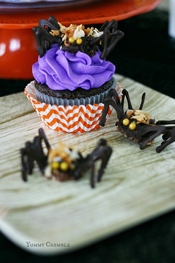 Chocolate Tarantula Cupcakes with Ferrero rocher chocolate spiders - www.yummycrumble.com