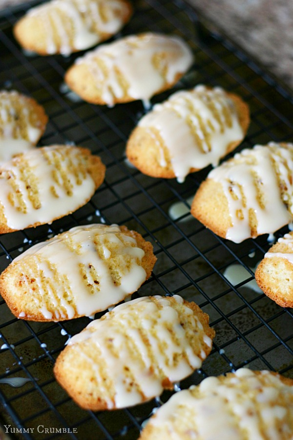 Magic Cookie Bar Madeleines