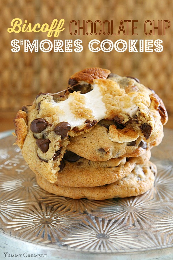 Biscoff Chocolate Chip Smores Cookies